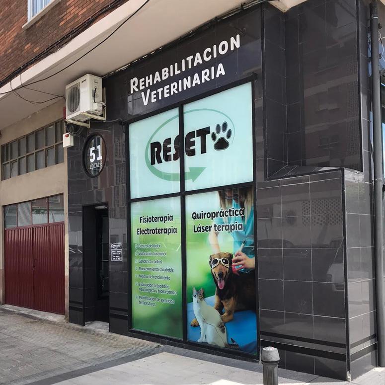 Joyfer Proyecto Reset Rehabilitación Veterinaria
